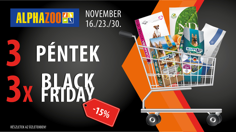 azoo black friday 847x475px 1